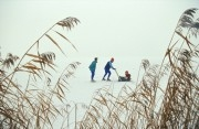 Netherlands, Lelystad. People Ice-skating on the lakes of National Park 'Oostvaardersplassen'.