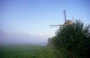 Windmill in a foggy meadow