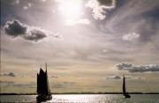 Sailing boats on the 'IJsselmeer'