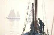 Sailingboats at the IJsselmeer