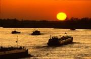 Ships at the Waal river at sunset