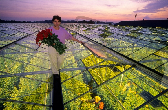 Bulbgrower standing on top of a greenhouse