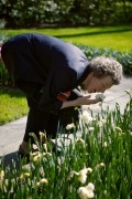 Girl smelling at an blooming tulip