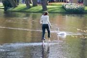 Girl walking over water in the  Keukenhof Flower Exhibition