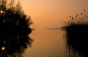 Twilight over the Biesbosch