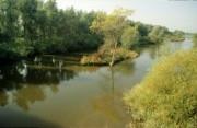 Biesbosch nature park